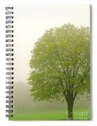 Tree In Fog Spiral Notebook