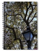 Tree In French Quarter Spiral Notebook