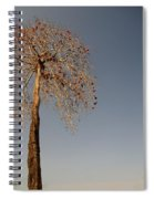 Tree In India Spiral Notebook