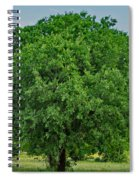 Tree In Nature Spiral Notebook
