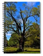 Tree In Rock Hill Spiral Notebook