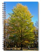 Tree In The Cemetery Spiral Notebook