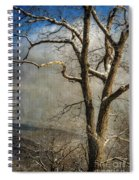 Tree In Winter Spiral Notebook