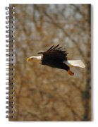 Tree Line Flight Spiral Notebook