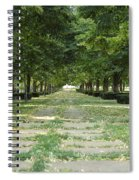 Tree Lined Spiral Notebook