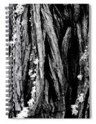 Tree Lines Spiral Notebook