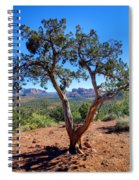 Tree-mendous Sight Spiral Notebook