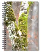 Tree Moss Abstract Spiral Notebook