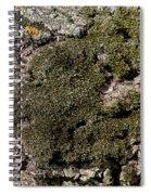 Tree Moss Spiral Notebook