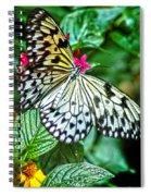 Tree Nymph 2 Spiral Notebook