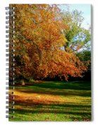 Tree Of Gold Spiral Notebook