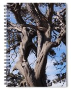 Tree Of Hope Spiral Notebook