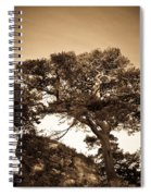 Tree Of Life In Sepia Spiral Notebook