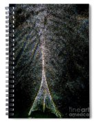 Tree Of Light Spiral Notebook