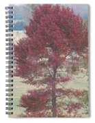 Tree Of Red Spiral Notebook