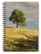 Tree On A Hill Vertical Spiral Notebook