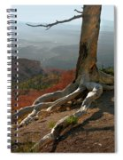 Tree On A Ridge In Bryce Canyon  Spiral Notebook