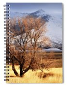 Tree On The Farm Spiral Notebook