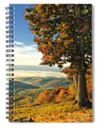 Tree Overlook Vista Landscape Spiral Notebook