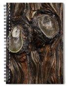 Tree Owl Spiral Notebook