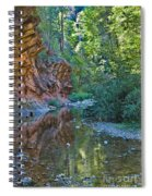 Tree Reflection Spiral Notebook