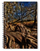 Tree Root Spiral Notebook