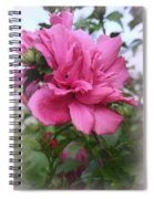 Tree Rose Of Sharon Spiral Notebook