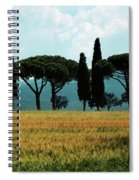 Tree Row In Tuscany Spiral Notebook