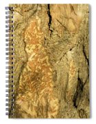 Tree Self Reflections In Bark Spiral Notebook