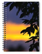 Tree Silhouette Over Sunset Spiral Notebook