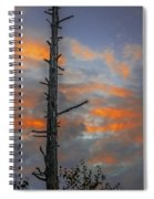 Tree Silhouette Spiral Notebook