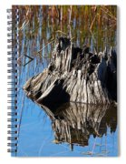 Tree Stump And Reeds Spiral Notebook