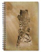 Tree Stump The Forgotten Series 05 Spiral Notebook