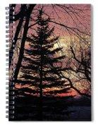 Tree Sunset Spiral Notebook