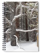 Tree Talk Spiral Notebook
