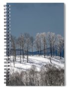 Tree Topper Hill Spiral Notebook