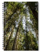 Tree Tops Spiral Notebook