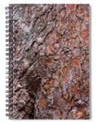 Tree Trunk Abstract Spiral Notebook