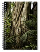 Tree Trunk And Ferns Spiral Notebook