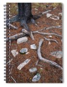 Tree Trunk Roots And Rocks Spiral Notebook