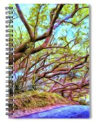 Tree Tunnel Near Isaac Hale Beach Spiral Notebook