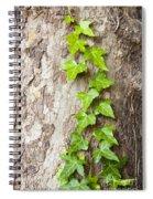 Tree Vine Spiral Notebook