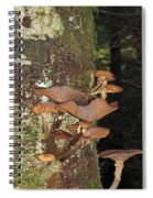 Tree With A Fungus Spiral Notebook