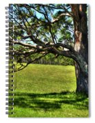 Tree With A Swing Spiral Notebook