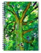 Tree With Owl Gnome And Mushroom Spiral Notebook
