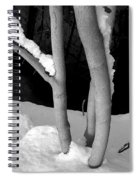 Tree With Snow Spiral Notebook