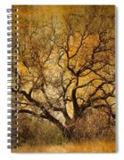 Tree Without Shade Spiral Notebook