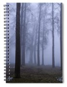 Trees Along Greenlake In Fog Spiral Notebook