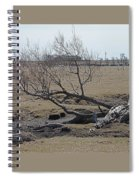 Trees And Early Spring Creek Spiral Notebook