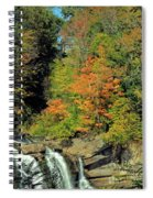 Trees And Falls Spiral Notebook